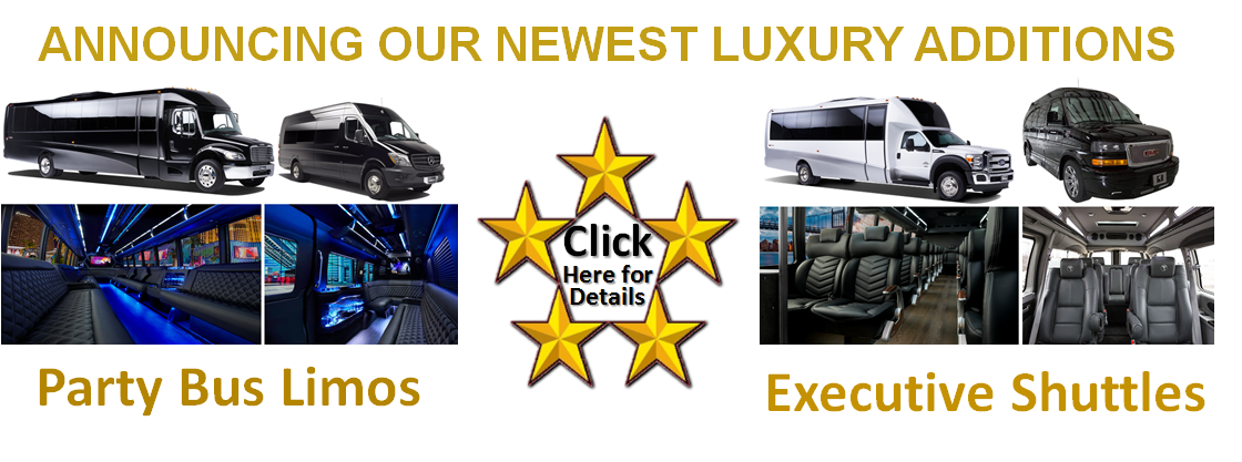 Party Bus Limos and Shuttle Buses