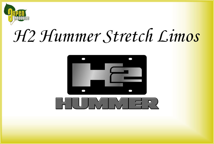 H2 Hummer Stretch Limo Services Minneapolis MN / St Paul Minnesota
