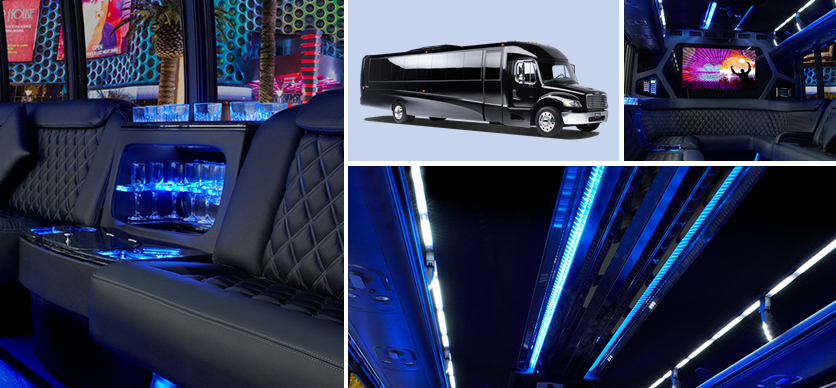 Party Bus Limo Services Minneapolis MN / St Paul Minnesota Interior Exterior Montage Image