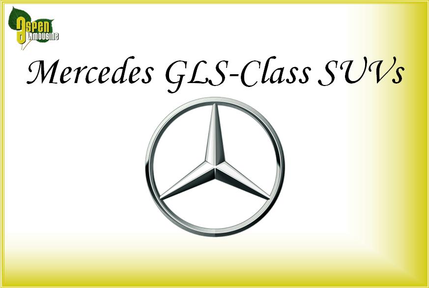 Mercedes GLS-Class SUV Car Services Minneapolis MN / St Paul Minnesota