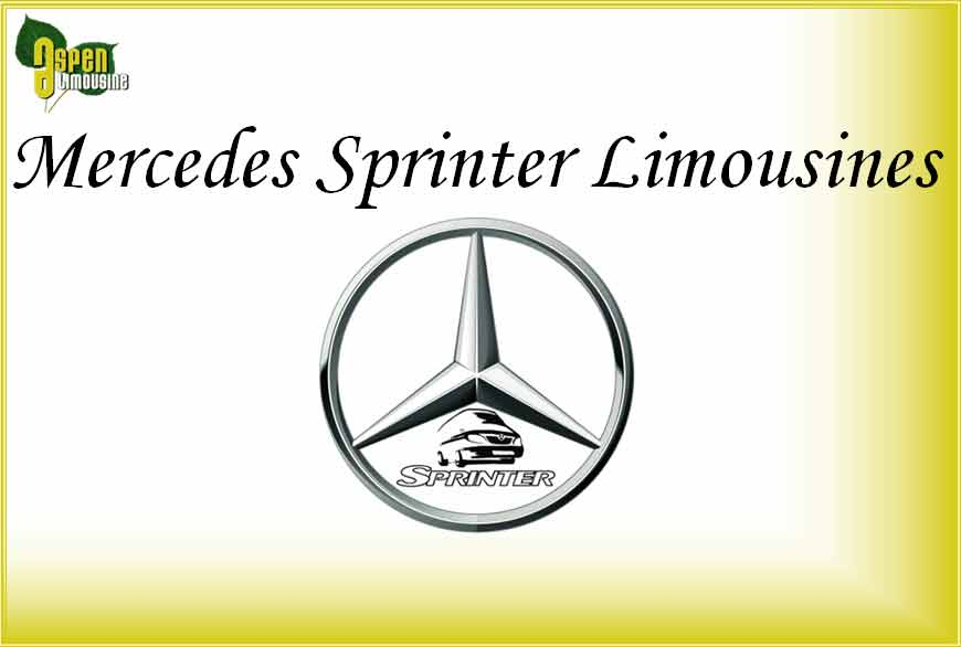 Mercedes Benz Sprinter Limo Services Minneapolis MN / St Paul Minnesota