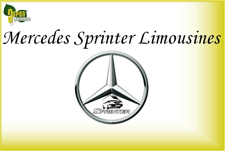 Mercedes Benz Sprinter Limo Services Minneapolis MN / St Paul Minnesota