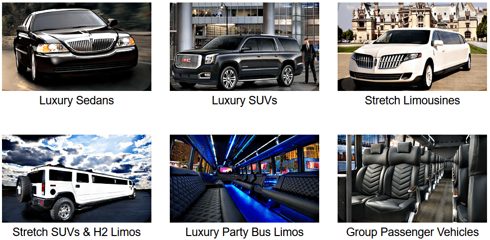 Chauffeured Vehicles for Rent for the Women's PGA Championship Minneapolis Limo-Car-Party Bus-and-Van Services-Minnesota