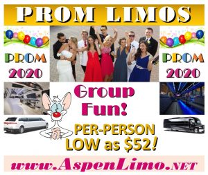 Prom Limo Deals Minnesota High School Proms Group Discounts for Minneapolis St. Paul Limos and Party Buses